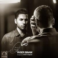 Yaser Binam - 'Emza'