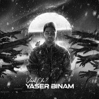 Yaser Binam - 'Yani Chi'