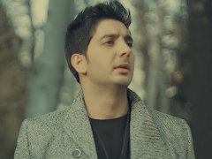 Farzad Farzin - Roozhaye Tarik
