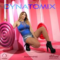 Dynatonic - 'Dynatomix 40'
