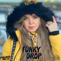 DJ Pooria - 'Funky Drop 2'